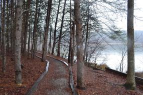 Gravel path along the banks of the lake