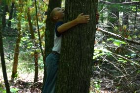 Young boy hugging tree on the Claytor lake TRACK Trail