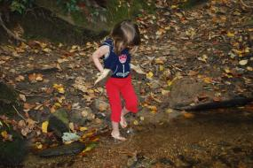 Young girl in creek