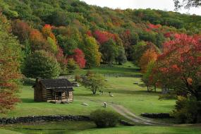 Log cabin on rolling hillside surrounded by trees in early fall