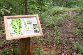 Nature sign at tee 2