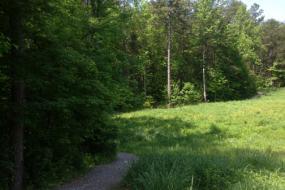 Gravel path through field
