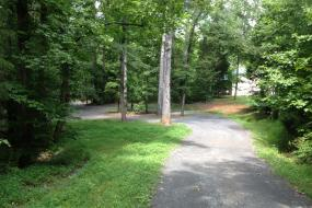 Paved path winding through trees