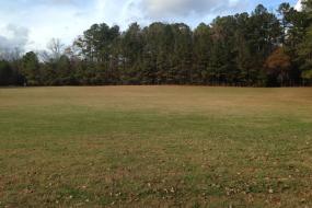 Open grassy lawn