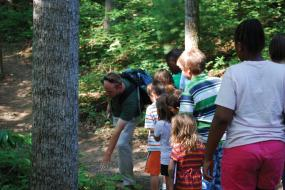 Group of children on guided hike on trail