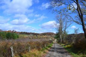 Gravel road through farm fields in autumn