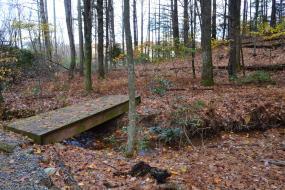 Wooden foot bridge over small stream