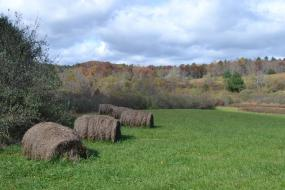Hay bales in a mountain field