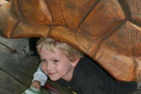 Young boy inside a large wooden turtle shell