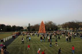 Crowd Surrounding the National Christmas Tree
