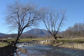 South Fork Rockfish River