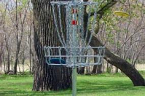 disc flying toward disc golf basket