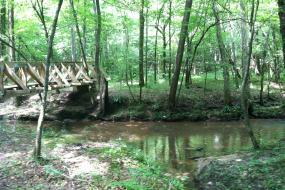 Wooden bridge over the creek