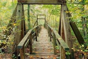 Wooden suspension bridge in autumn