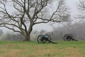 Cannons in the mist