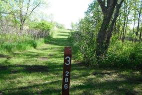 picture of the course in a wooded area