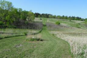 view of the course with mowed green grass and trees to the left and in the background