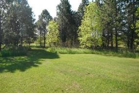 part of the course with green grass and many evergreens