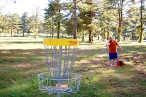 Disc golfer putting