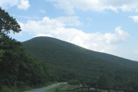 Road leading to Elk Knob