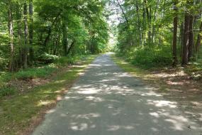 Paved Warren Creek Trail