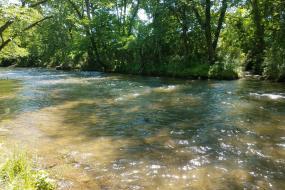 Swannanoa River