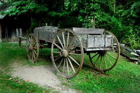 Wagon © Vicki Dameron