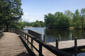 Boardwalk and dock on the Cashie River