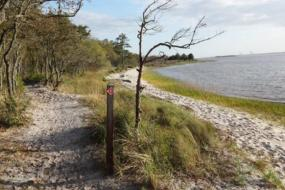 Sandy path along water