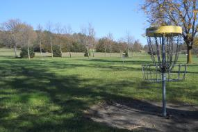 Hole 2 disc golf basket