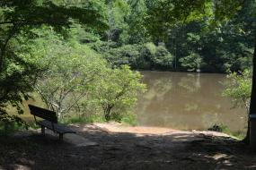 A bench overlooking the creek