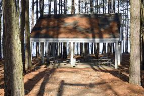Picnic shelter surrounded by pine trees