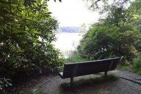 Bench looking out over lake