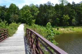 Wooden bridge over lake