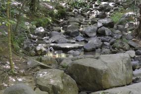 Large stones in the stream