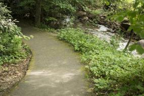 Trail along Flat Creek