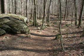 Trail beside large mossy boulder