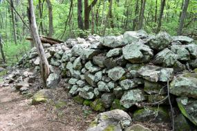 Green rock wall