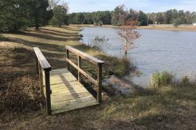 Bridge by pond