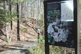 Interpretive sign about the Laurel Loop
