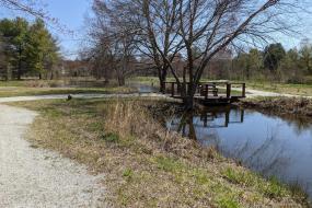 Path beside pond