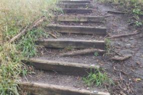 Wooden steps up a small hill