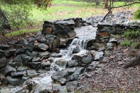 Check dam in stream