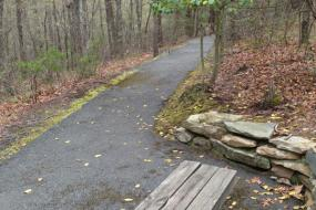 Bench along trail