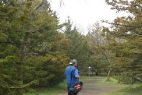 Disc golfer walking the course