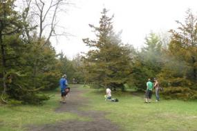 Group of disc golfers on the course