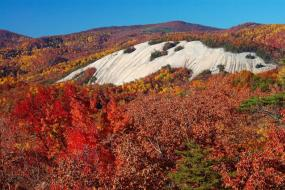 Stone Mountain at peak fall foliage